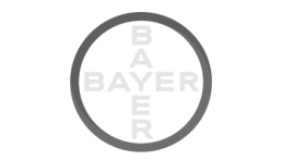 Zauberer Bayer